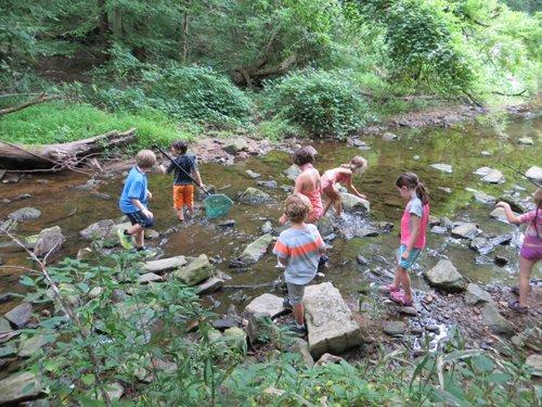 Stream Ecology Program at Lake Roland