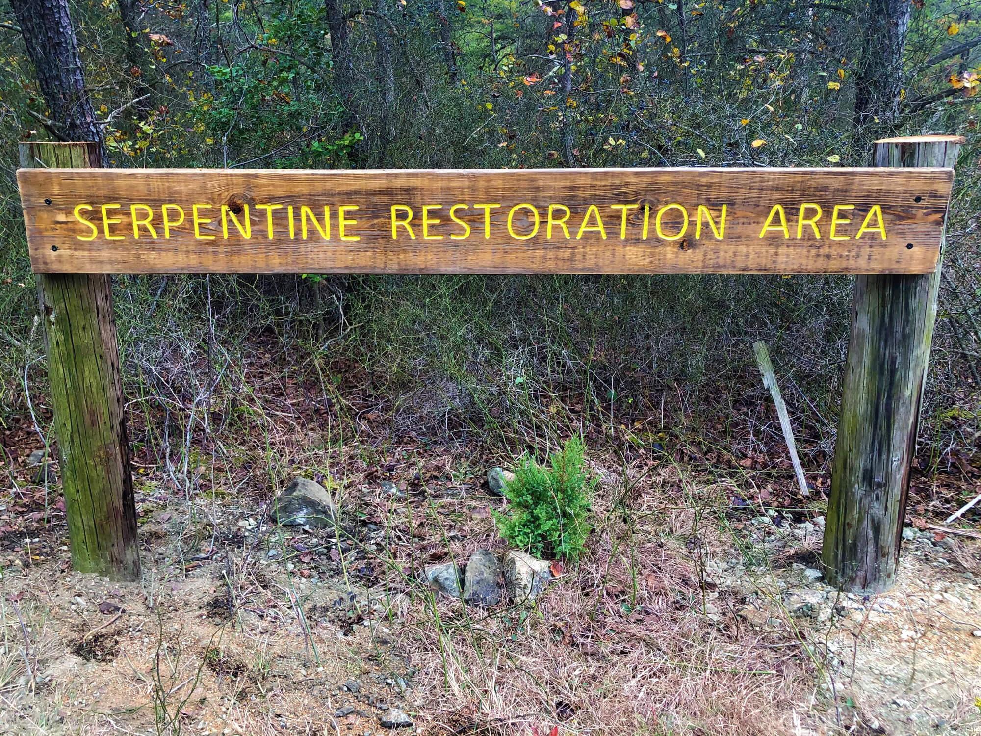 Serpentine service road sign