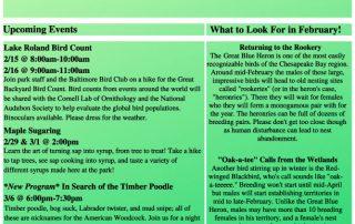 Lake Roland February 2020 newsletter